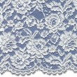Pale Ivory Corded Wedding Lace Fabric 3875C