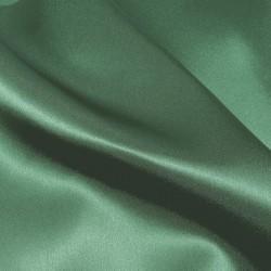 colr 46 Satin back Crepe Silk 4255