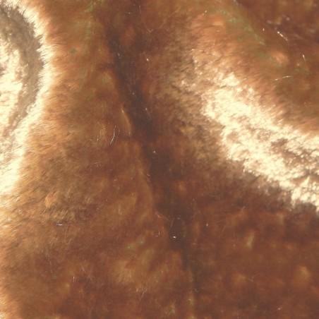 colr 195-1012 2-tone Panne Velvet Dress Fabric 4259